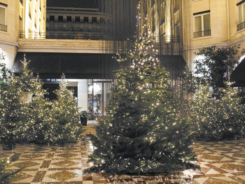 weihnachtsb ume frutiger display ag dekorationskonzept. Black Bedroom Furniture Sets. Home Design Ideas
